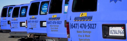 GTA Mold Remediation Toronto